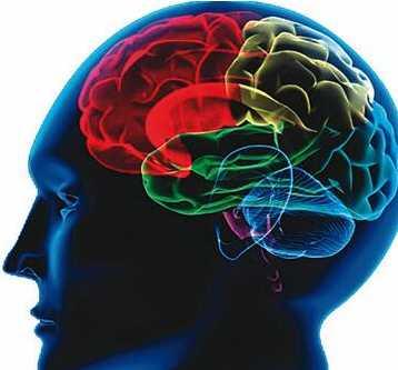 癫痫病患者真的会遗传吗